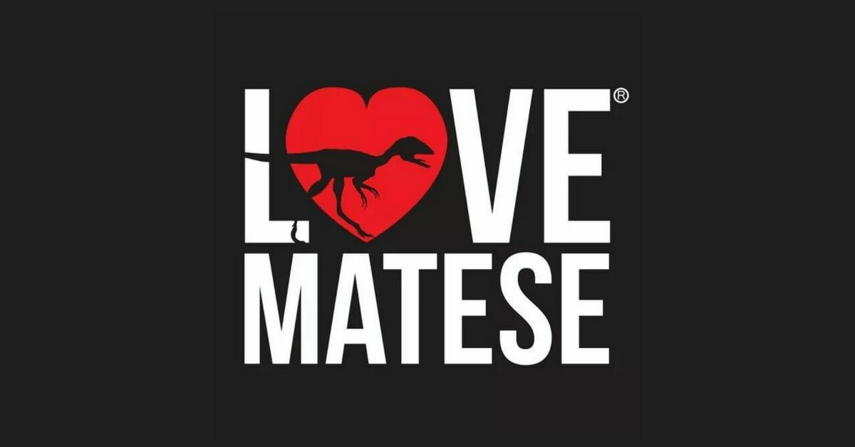Love Matese